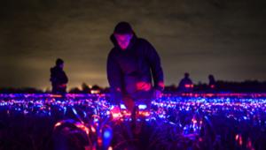 Nederlandse kunstenaar helpt de landbouw